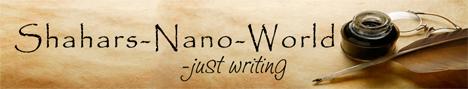 Web-Banner NaNo World
